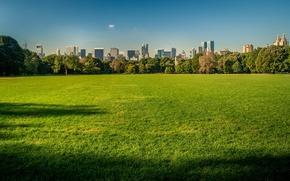 Картинка небо, трава, здания, Нью-Йорк, США, Центральный парк