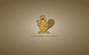 Картинка минимализм, бобер, beaver, надпись