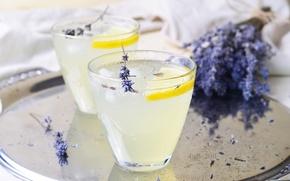 Картинка лимон, лаванда, лимонад