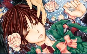 Картинка вода, спокойствие, розы, руки, Vampire Knight, Yuki, банты