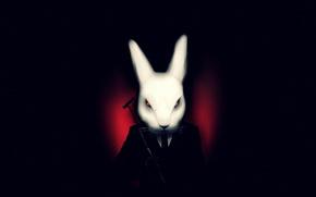 Картинка белый, темный фон, кролик, арт, костюм, misfits