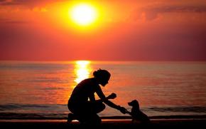 Картинка море, девушка, закат, собака, силуэт