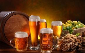 Обои пена, стол, пиво, стаканы, колосья, кружки, светлое, бочонок, хмель