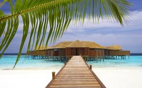 Картинка песок, пляж, небо, природа, пальма, океан, берег, ветка, бунгало