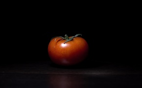 Обои Lonely tomato, фон, помидор