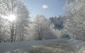 Картинка зима, дорога, солнце, снег, деревья, Кубань, Лаго-Наки, Akela white