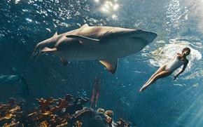 Обои плавает, фотосессия, лучи света, журнал, Рианна, кораллы, купальник, акулы, Rihanna, Harpers Bazaar, певица, актриса, 2015, ...