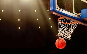 Картинка ball, basket, annotation