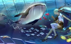 Картинка девушка, рыбки, ленты, пузыри, звезда, арт, медузы, форма, школьница, vocaloid, под водой, вокалоид, касатка, bottle …