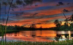 Картинка небо, вода, облака, деревья, пейзаж, закат, природа, озеро