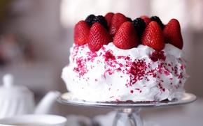Обои ягоды, белый, крем, сладкое, тот, ежевика, клубника