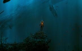 Обои рыбы, человек, вода, глубина, огонь