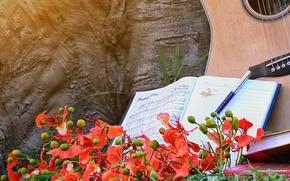 Картинка цветы, гитара, ноты, музыка
