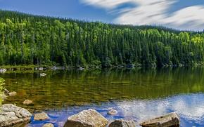 Картинка лес, небо, вода, облака, деревья, озеро, камни