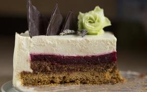 Картинка роза, шоколад, торт, слои, десерт, кусок