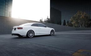 Обои авто, Audi