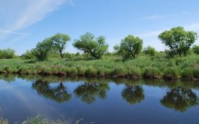 Картинка небо, трава, озеро