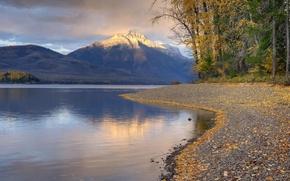 Обои Лес, осень, Вода, Горы