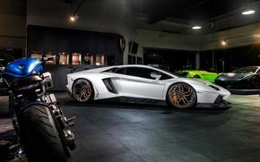 Картинка car, тюнинг, tuning, LP700-4, автообои, Lamborghini Aventador, Novitec Torado