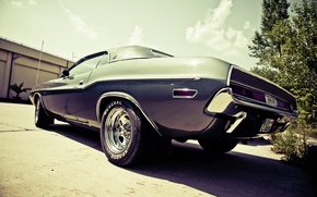 Картинка Dodge, Challenger, photo, photographer, muscle car, markus spiske, oldtimer