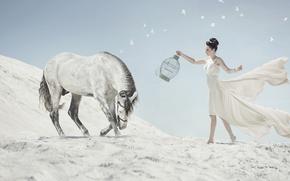 Картинка поклон, конь, девушка, клетка, песок