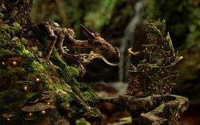 Обои дракон, фея, лес