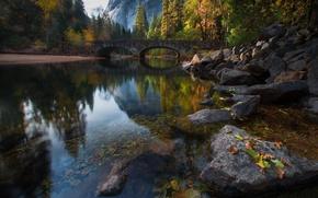 Картинка осень, мост, природа, деревья, река, лес
