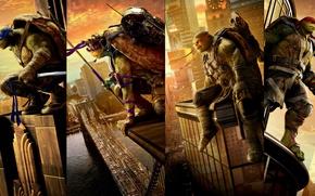 Обои постер, друзей, Черепашки-ниндзя 2, Leonardo, Donatello, Raphael, фэнтези, Michelangelo, Teenage Mutant Ninja Turtles: Out of ...