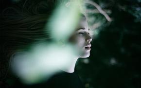 Картинка девушка, блики, волосы, профиль, The Art Of Letting Go