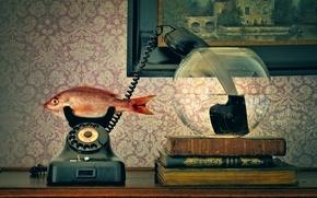Картинка аквариум, трубка, рыба, телефон