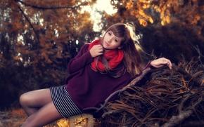 Картинка взгляд, листья, девушка, деревья, поза, весна, азиатка, кофта, вязка, красный шарф