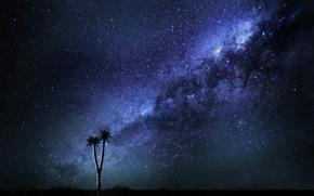 Картинка Space, Way, Milky