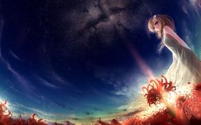 Картинка поле, девушка, звезды, закат, цветы, арт, красные, munashichi, radiata, Lycoris
