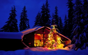 Обои игрушки, рождество, новый год, зима