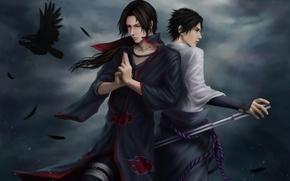 Картинка тучи, катана, перья, наруто, ниндзя, ворон, Sasuke, Naruto, art, саске, Itachi, учиха, итачи, Uchiha, zetsuai89