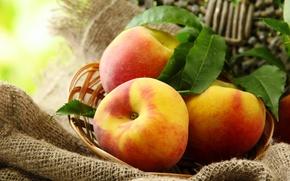 Картинка лето, листья, корзина, фрукты, персики
