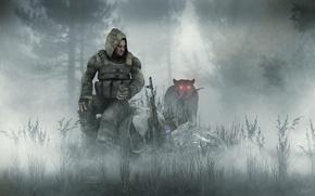 Обои туман, stalker, сталкер, бродяга