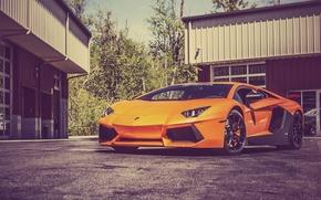Картинка Lamborghini, Ламборджини, Orange, LP700-4, Aventador, Авентадор, Asphalt