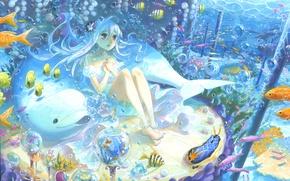 Картинка рыбы, дельфин, пузырьки, арт, девочка, под водой, kyouya kakehi