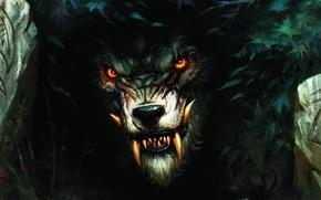 Картинка волк, зубы, оборотень, кусты