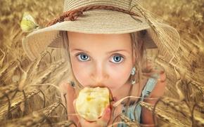Картинка поле, взгляд, яблоко, шляпа, девочка, колосья