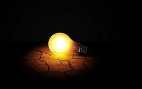 Картинка земля, свет, лампа, росток