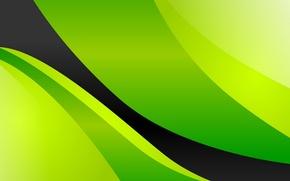Картинка зеленый, фон, чёрный