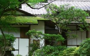Картинка крыша, зелень, деревья, дом, мох, сад, Азия, черепица