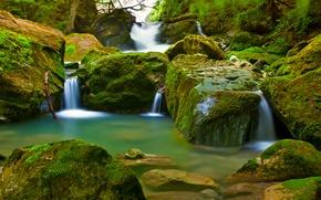 Картинка лес, водопад, мох