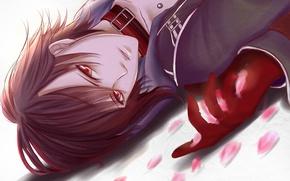 Картинка лепестки, парень, лежа, amnesia, shin