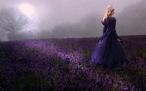 Картинка поле, девушка, лаванды