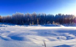 Картинка зима, снег, деревья, мороз, -25