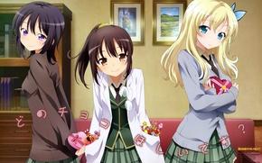 Картинка улыбка, брюнетка, блондинка, шатенка, Арт, школьная форма, Kashiwazaki Sena, У меня мало друзей, Boku wa …