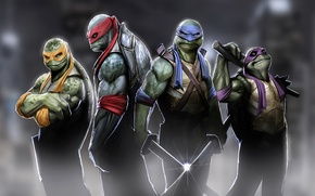 Обои leonardo, turtles, raphael, teenage mutant ninja turtles, tmnt, michelangelo, ninja, donatello
